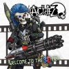 Acidez - Welcome To The 3D Era LP