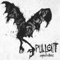 Pullout - Eagles & Vultures CD