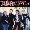 Dangerous Rhythm - Stray Cat Blues EP