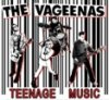Vageenas, The – Teenage Music LP