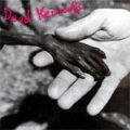 Dead Kennedys - Plastic Surgery Disaster LP