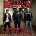 Griswalds - Beyond The Television Scream LP